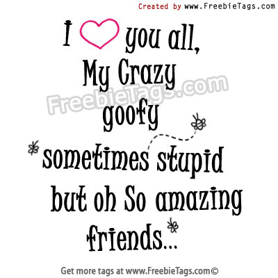 I love you all - my crazy, goofy, stupid, but amazing friends facebook tags